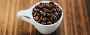 coffee roaster, coffee percolator